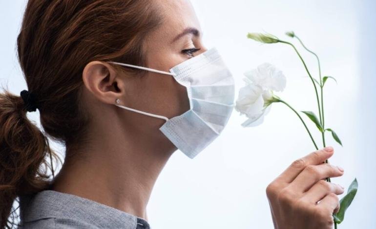 ¿puedo-recuperar-el-olfato?