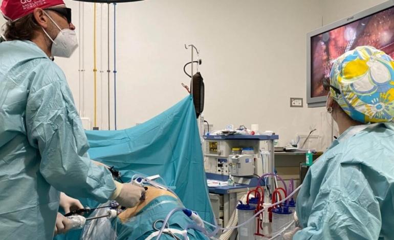 un-espanol-y-un-italiano-reciben-un-trasplante-renal-cruzado-de-donante-vivo