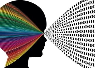 Percepción visual (2)