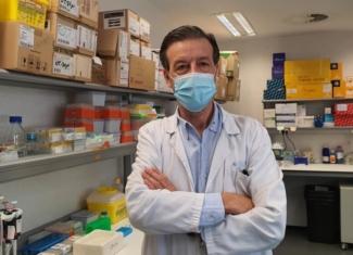 Diseñan un anticuerpo antitumoral más eficaz y menos tóxico