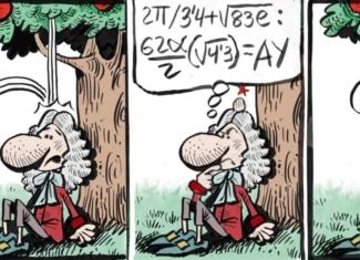 Newton y el chichón más inteligente