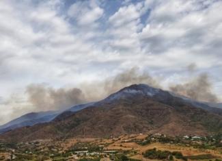 ¡Cuidado con la contaminación por incendios forestales!